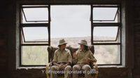 https://www.ecartelera.com/videos/trailer-subtitulado-espanol-safari/
