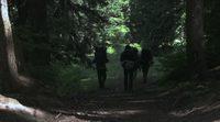 https://www.ecartelera.com/videos/trailer-valley-of-the-sasquatch/
