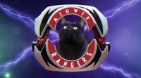 Intro de los Power Rangers con gatos
