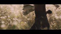 https://www.ecartelera.com/videos/trailer-original-una-bolsa-de-canicas/