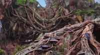 Presentación del Valle de Mo'ara y las montañas flotantes - Pandora