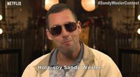 https://www.ecartelera.com/videos/sandy-wexler-conoce-a-sandy/