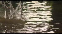 https://www.movienco.co.uk/trailers/goodbye-christopher-robin-trailer/