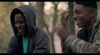 https://www.ecartelera.com/videos/trailer-subtitulado-la-vida-y-nada-mas/