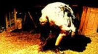 Tráiler 'El último exorcismo'