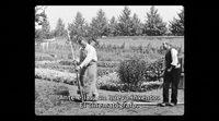 https://www.ecartelera.com/videos/trailer-espanol-lumiere-comienza-la-aventura/