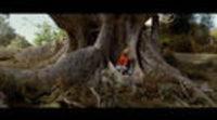 https://www.ecartelera.com/videos/trailer-arbol/