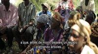 https://www.ecartelera.com/videos/trailer-vose-gracias-por-la-lluvia/