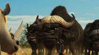 https://www.ecartelera.com/videos/trailer-animals-united/