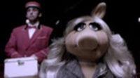 Tráiler 'Los Muppets' al estilo 'Los hombres que no amaban a las mujeres'