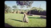 Vídeo 'Elisa y Marcela' #2