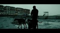 https://www.ecartelera.com/videos/trailer-dogman/