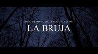 https://www.ecartelera.com/videos/trailer-subtitulado-espiritu-del-mal-pyewacket/