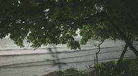 https://www.ecartelera.com/videos/trailer-espanol-el-reino-de-la-sirena/