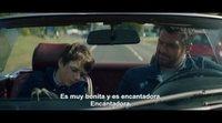 https://www.ecartelera.com/videos/teaser-subtitulado-senor-sabelotodo/