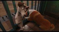 Tráiler español 'Corgi, las mascotas de la reina'