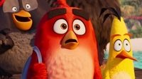 https://www.ecartelera.com/videos/teaser-trailer-angry-birds-2/