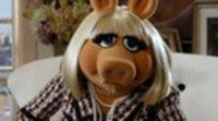 https://www.ecartelera.com/videos/los-muppets-parodian-los-juegos-del-hambre/