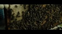 https://www.movienco.co.uk/trailers/tell-it-to-the-bees-official-trailer/