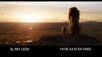 Spot 'El Rey León':