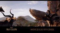 Spot 'El Rey León': El ciclo de la vida