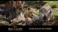 Spot 'El Rey León': Timón y Pumba