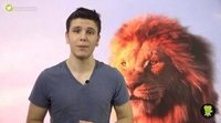 ¿Por qué 'El Rey León' ha sido tan agridulce?