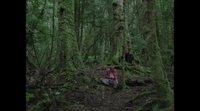 https://www.ecartelera.com/videos/trailer-2-the-nightingale/