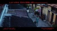 https://www.ecartelera.com/videos/promo-guida-la-vida-invisible-de-euridice-gusmao/