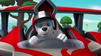 Tráiler 'Paw Patrol: Ready, Race, Rescue!'