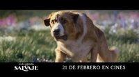 """Spot en español 'La llamada de lo salvaje' - """"Destino"""""""