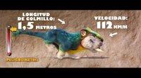 https://www.ecartelera.com/videos/clip-exclusivo-los-croods-una-nueva-era-croodimales/