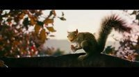 Teaser tráiler de 'Squirrels'