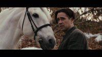 https://www.ecartelera.com/videos/trailer-espanol-cuento-de-invierno/