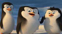 Tráiler 'Los pingüinos de Madagascar'