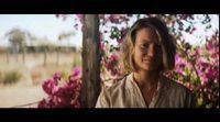 https://www.ecartelera.com/videos/trailer-espanol-el-viaje-de-tu-vida/