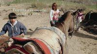 https://www.ecartelera.com/videos/trailer-camino-a-la-escuela/
