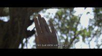 https://www.ecartelera.com/videos/trailer-aguas-tranquilas/