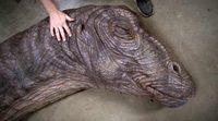 Making Of Apatosaurus 'Jurassic World'