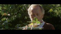 https://www.ecartelera.com/videos/trailer-primavera-en-normandia/