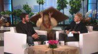 Asustan a Jake Gyllenhaal en el programa de Ellen