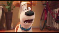 Tráiler español 'Mascotas' #2