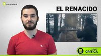 Vídeo crítica de 'El renacido (The revenant)'