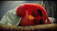 'Angry Birds. La película': Conoce a Red