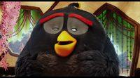 'Angry Birds. La película': Conoce a Bomb