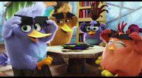 Tráiler español 'Angry Birds, la película' #2