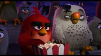 Spot 'Angry Birds. La película' #2