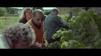 https://www.ecartelera.com/videos/trailer-manana/