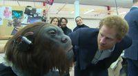 Los príncipes de Inglaterra visitan el set de rodaje de 'Star Wars: VIII'